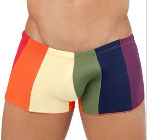 Boxer orgullo y colorido