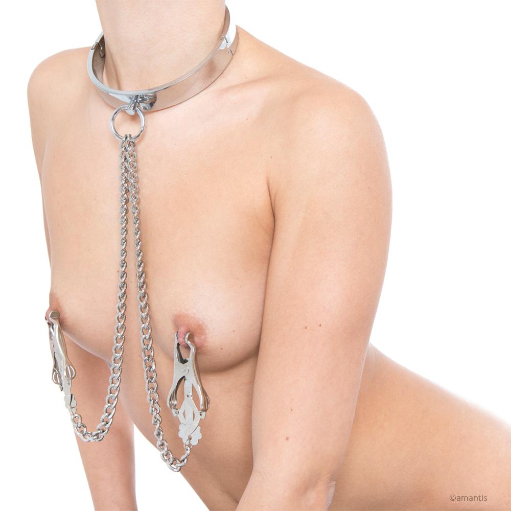 Collar de metal con pinzas japonesas de amantis