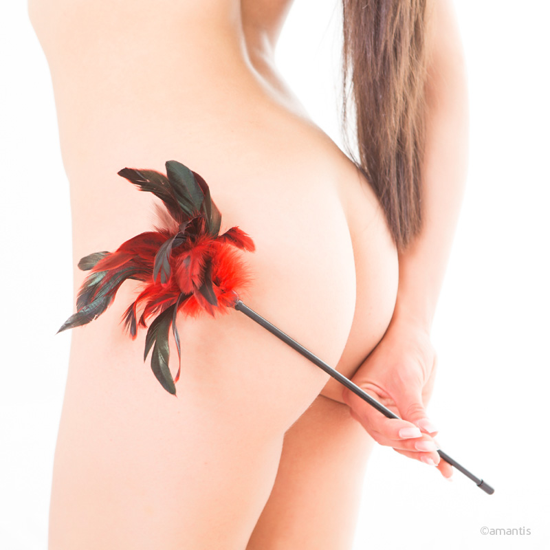Varilla de caricias eróticas con pluma